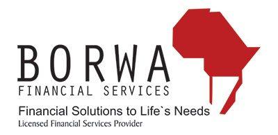 Borwa Financial Services Logo